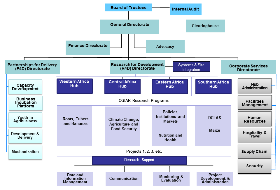 Picture of IITA Organogram