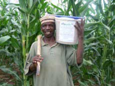 Image of a maize farmer